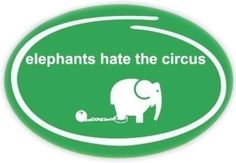 animal abuse is legal at the circus...