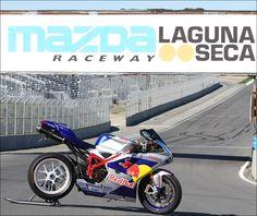 Red Bull Ducati 1098. #redbull
