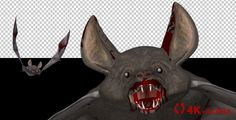 Vampire Bat in Blood - Flying Cycle - Front Angle - 4K #Alpha, #Animated, #Bat, #Blood, #Horror, #Loop, #Mystic, #Spooky, #Underworld, #Vampire, #VideoMagus, #Witch https://goo.gl/5PS2kS