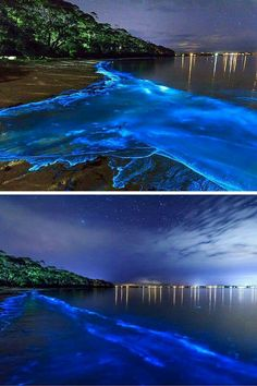 Bioluminescent Bay – Fajardo, Puerto Rico