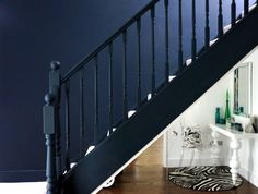 Basalt Blue dark walls Hallway, mirrored under stairs cupboard and zebra rug