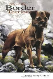 Image result for body art border terrier