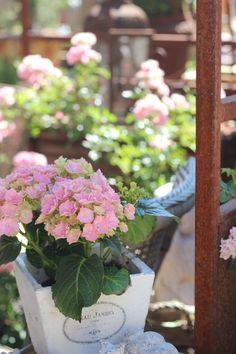 Shabby Chic Für Den Garten brunnen aus cortenstahl für den garten brunnen steel