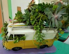 I bought this old van & thought I would add succulents on top. Next, I'll add some peace signs & colorful flowers. Going for the hippie van way back in the good old days!