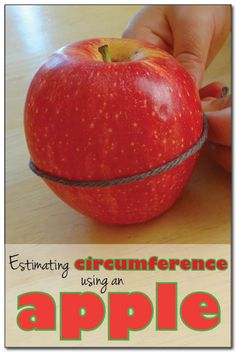 Estimating the circumference of an apple - this apple math activity encourages kids to develop estimation and measurement skills. #apples #handsonmath || Gift of Curiosity