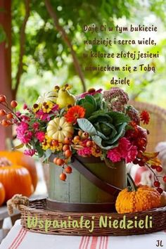 Pasta Flexible, Table Decorations, Plants, Pictures, Patterns, Historia, Good Morning Funny, Sunday, Funny Stuff