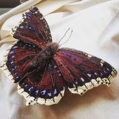 I am Heather Everitt an embroiderer from Devon, England. My creative passion in life is to stitch beautiful butterflies and moths. Inspired by vintage entomology collections, I use layers of silk, thread and beads to depict the wing patterns of these glorious creatures.