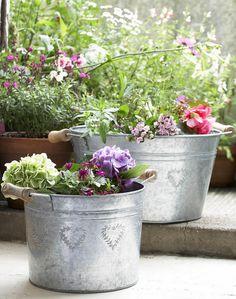 galvanized planter