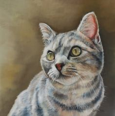 Just about to start another kitty so thought I'd pretty an old one to remind people that I don't just paint songs and horses! This is the gorgeous Coco, oil on board, 16 x via Cat Empire, Cat Face, Dog Portraits, Mammals, Cats Of Instagram, Cat Lovers, Dog Cat, Horses, Art Prints