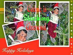 What the E.L.F.? Cedric is Stocking Around the tree! Happy ELFMAS!