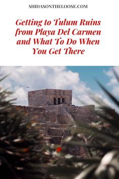 How To Get To the Tulum Ruins | Tulum Ruins | Day Trips from Playa Del Carmen | Things To Do In Quintana Roo | PDC | Tulum | What to do in Tulum