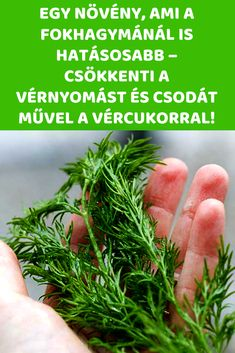 Natural Remedies, Kuroko, Herbs, Health, Food, Health Care, Eten, Herb, Natural Treatments
