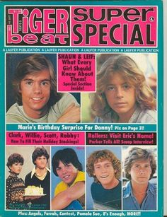 Tiger Beat.  Oh how I loved Shaun Cassidy. Da do run run.