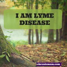 i am lyme disease