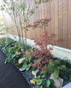 Zen Garden Design, Japanese Garden Design, Small Patio Spaces, Garden Windows, House Entrance, Outdoor Projects, Landscape Architecture, Backyard Landscaping, Plants