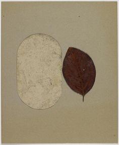 'Untitled', Joseph Beuys, 1955