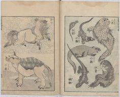 El Hurgador [Arte en la Red]: Rinocerontes (LXXII)