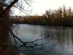 Greenville, Mo. Campground, St Francis River