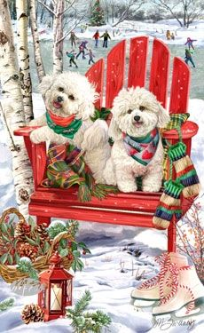 Christmas Cards - Bichon Frise - Christmas Holiday- reminds me of BJ and our precious Buddy Christmas Scenes, Christmas Animals, Christmas Dog, Christmas Pictures, Vintage Christmas, Christmas Holidays, Christmas Cards, Merry Christmas, Holiday Cards
