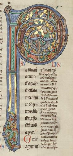 capital letter P leads page of illuminated medieval Latin book by theologian… Calligraphy Art, Medieval Art, Illuminated Letters, Book Of Kells, Illustrated Manuscript, Illuminated Manuscript, Celtic Art, Hand Lettering, Book Art