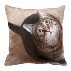 A tabby cat looking up throw pillow