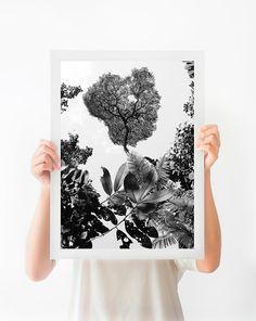 Black and White Nature Photography, Botanical Printable Photography, Costa Rica Rainforest Printable Art, Natural Minimalist Home Decor