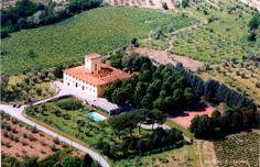 Azienda Agricola Colognole - #Laudemio producer in Rufina, Florence, #Tuscany