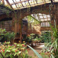 Home Greenhouse, Greenhouse Gardening, Flower Nursery, Plant Nursery, Indoor Garden, Outdoor Gardens, Oasis Style, Shopping In Barcelona, Beautiful Stairs