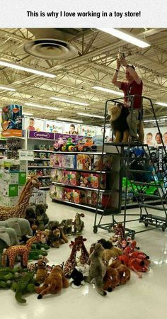 This is why I love working in a toy store! More memes, funny videos and pics on Humour Disney, Funny Disney Memes, Stupid Funny Memes, Funny Relatable Memes, Funny Stuff, Funny Things, Disney Jokes, 9gag Funny, Disney Disney