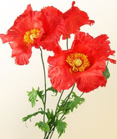Scarlet poppies from a cold porcelain - Fito-Art.ru