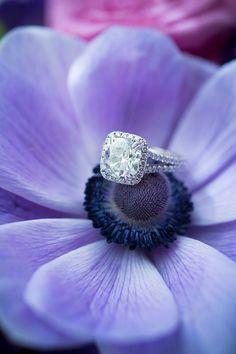 Regally Elegant Purple Maryland Wedding from Eli Turner Studios - engagement ring