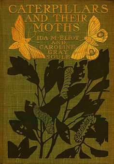 Caterpillars and their Moths, by Ida Mitchell Eliot and Caroline Gray Soule, with illustrations by Edith Eliot, and binding design by Decorative Designers. Published by The Century Co, NY, 1902