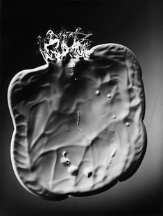 Marek Piasecki ::  Untitled, 1959 / Marek Piasecki is best known as the creator of graphics on photosensitive paper (mainly heliography) and puppet photography in distinctive three-dimensional luminaries.