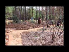 Athens GA Gardener Backyard 10-year transition