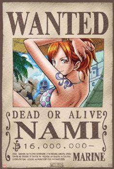 Póster One Piece. Nami, Se Busca Foto 1