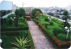 Construcción de azoteas jardinadas UNIPLAS JARDIN   Imperquimia - Calidad en su construcción