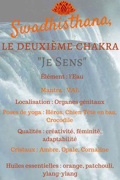 Die Eigenschaften von Swadhisthana, dem heiligen Chakra - My CMS Qi Gong, Healing Meditation, Yoga Meditation, Ayurveda, Les Chakras, Reiki Chakra, Kundalini Yoga, Vinyasa Yoga, Yoga Benefits