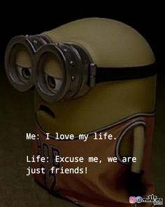 Minion Meme, Minions Quotes, Minion Rock, Sad Quotes, Best Quotes, Life Quotes, Adorable Quotes, Minion Pictures, Quotes About Photography