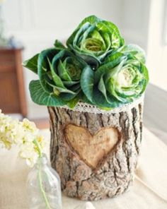 Cabbage flower in log vase <3 - cute idea for a Peter Rabbit Shower/Party