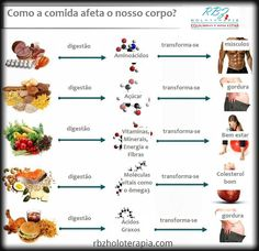 Como os alimentos afetam o corpo humano