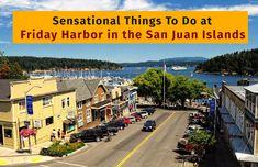 Sensational Things To Do at Friday Harbor in the San Juan Islands    #sanjuanislands #touristattractions #touristattractionssanjuanislands #tourist #fridayharbor #harbor #whalewatchingsanjuanislands