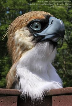 Philippine Eagle Mask by Nambroth.deviantart.com on @deviantART
