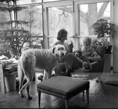 photographer Edward Stein with Finntan & Tripod the Beagle