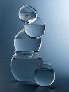 Goldfish Bowls by John Manno, via Azul Niagara, Niagara Falls, Glass Stairs, Pantone 2020, Goldfish Bowl, Foto Art, Glass Design, Betta, Belle Photo