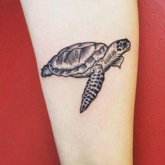 Conheça nossa seleção com 65 fotos incríveis de tatuagens de tartarugas para você se inspirar.
