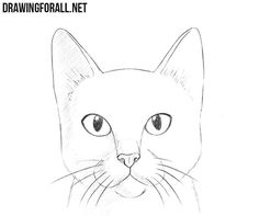 How to Draw a Cat Head drawing Simple cat drawing, Cat face how to draw a cat - Drawing Tips Cat Drawing For Kid, Cat Eyes Drawing, Simple Cat Drawing, Drawing Heads, Easy Cartoon Drawings, Easy Drawings, Animal Drawings, Cat Cartoon Drawing, Cat Sketch