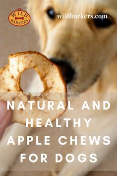 Apple Chews For Dogs: Easy, Natural, Cheap, Homemade, DIY Dog Treat Recipe