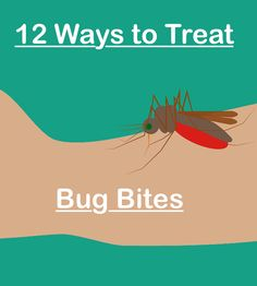 12 Ways to Treat Bug Bites