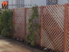 10 Discerning Clever Tips: Garden Fence Plans Modern Fence Houzz.Wooden Fence Nails Or Screws Modern Fence Houzz. Dog Fence, Front Yard Fence, Fenced In Yard, Pallet Fence, Fence Art, Metal Fence, Small Fence, Fence Stain, Horizontal Fence