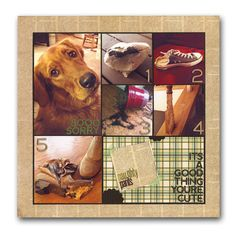 Top Five Dog/puppy Layout 6 photos Dog Scrapbook Layouts, Scrapbook Paper, Scrapbooking Ideas, 6 Photos, Pictures, Photo Sketch, Custom Canvas, Paper Cards, Scrapbooks